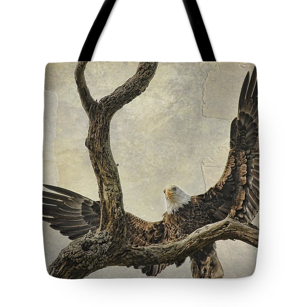 Raptor Tote Bag featuring the photograph On Wings High by Deborah Benoit