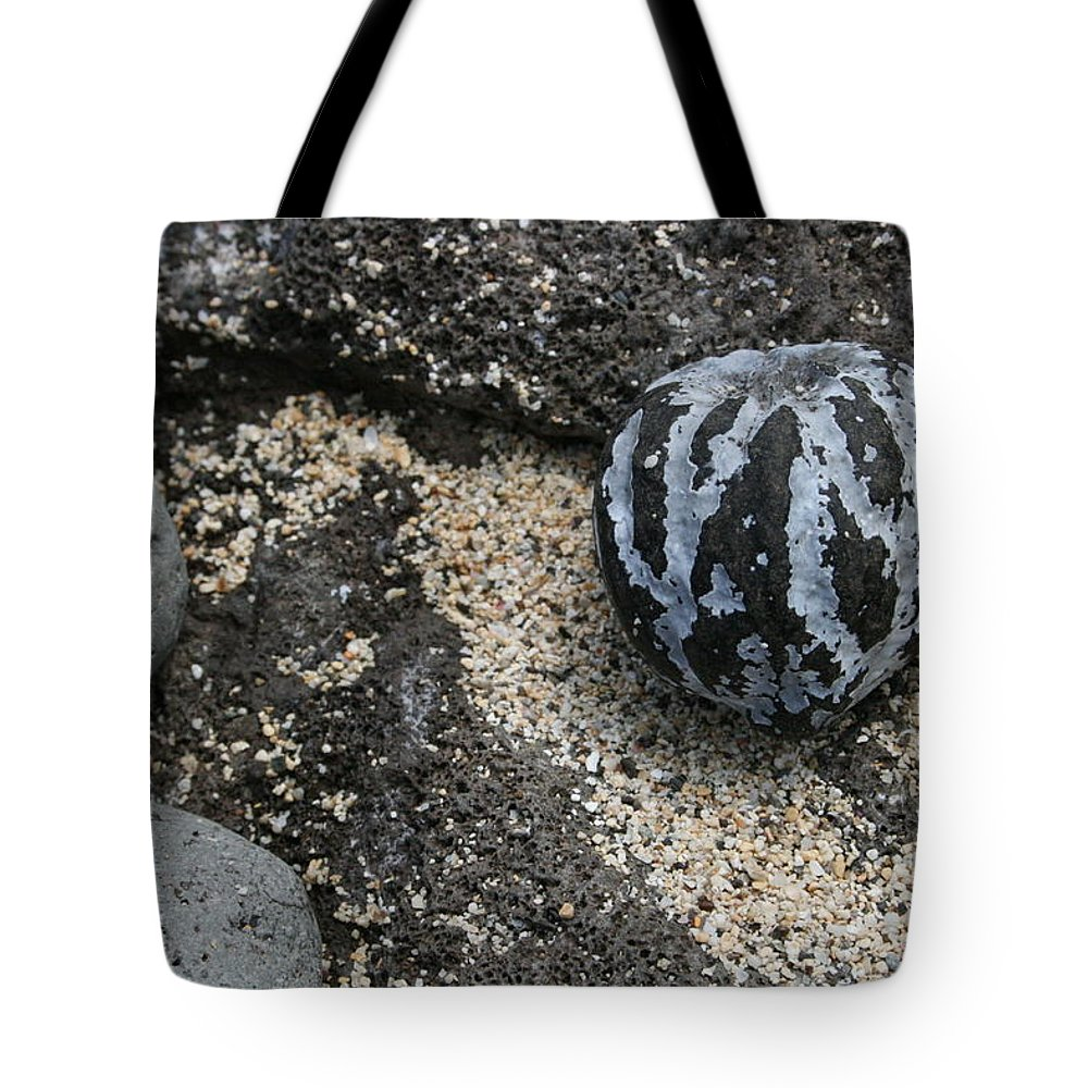Jennifer Bright Tote Bag featuring the photograph One Candlenut by Jennifer Bright