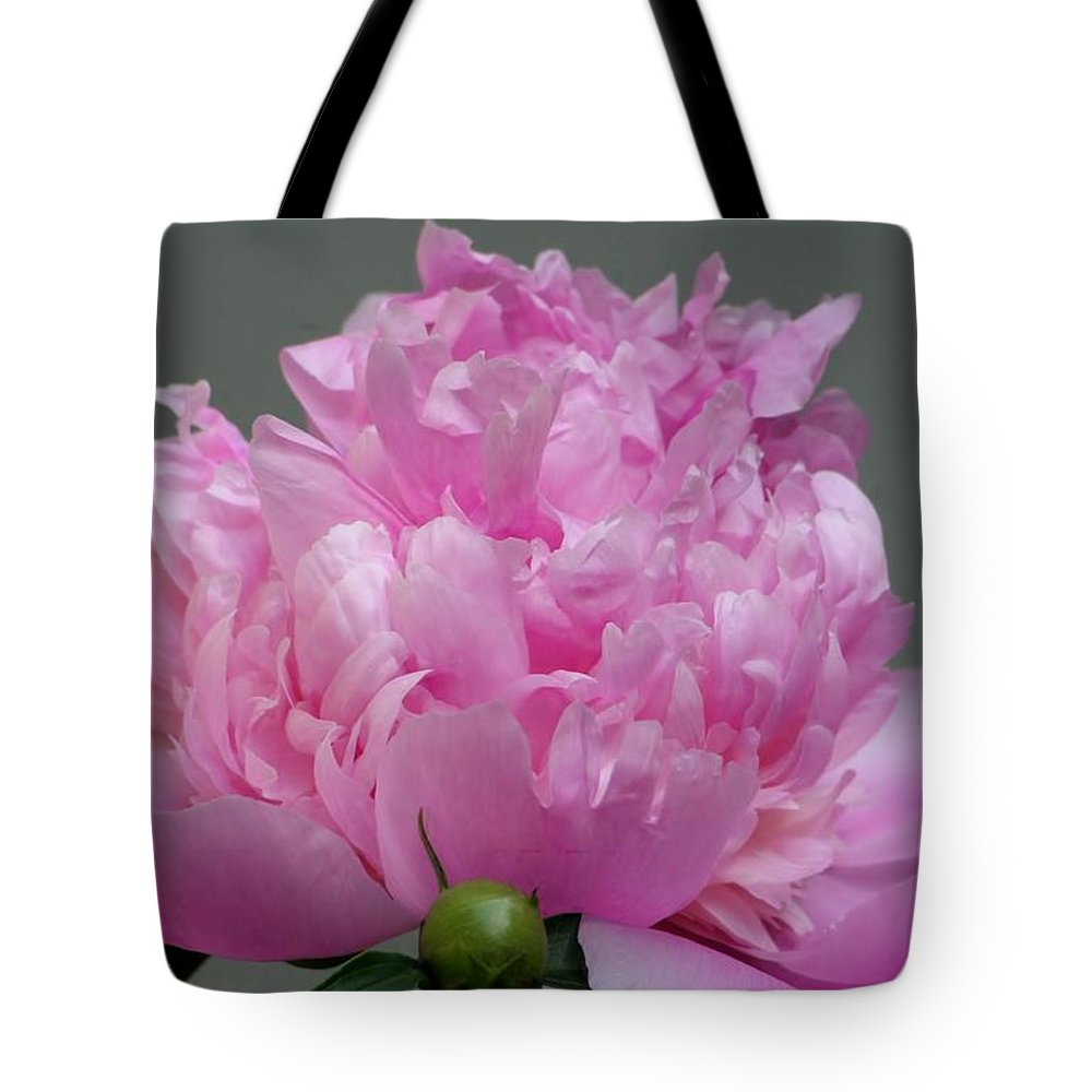 Tote Bag featuring the photograph One Plus by Barbara S Nickerson