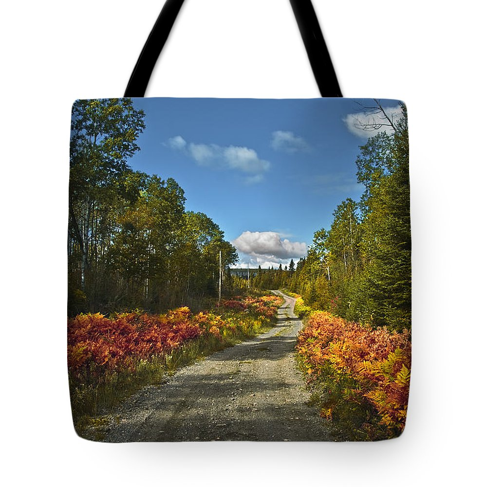 Landscape Tote Bag featuring the photograph Ontario Backroad by Grant Groberg