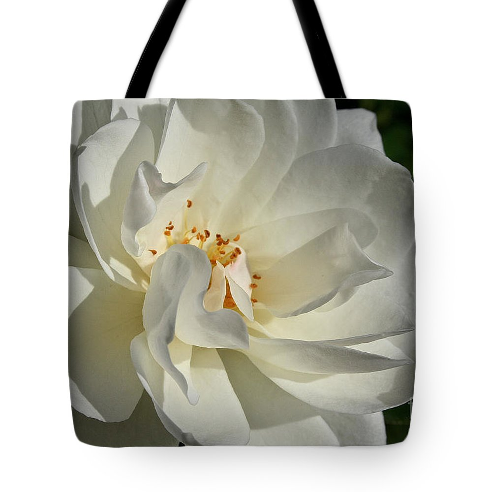 Flower Tote Bag featuring the photograph Open Iceberg by Susan Herber