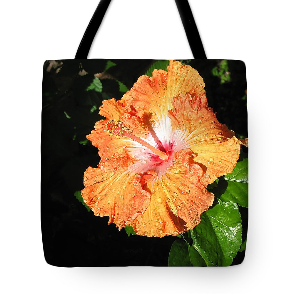 Raindrops Tote Bag featuring the photograph Orange Hibiscus After The Rain 1 by Connie Fox