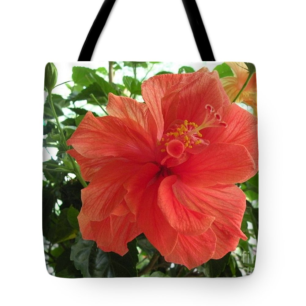 Floral Tote Bag featuring the photograph Orange Hibiscus by Saundra Lane Galloway