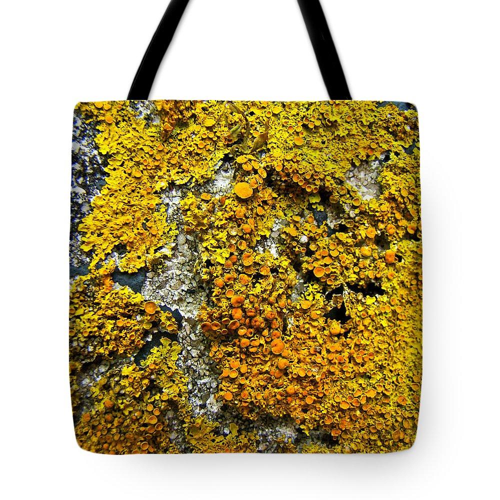 Lichen Tote Bag featuring the photograph Orange Lichen - Xanthoria Parietina by Mother Nature