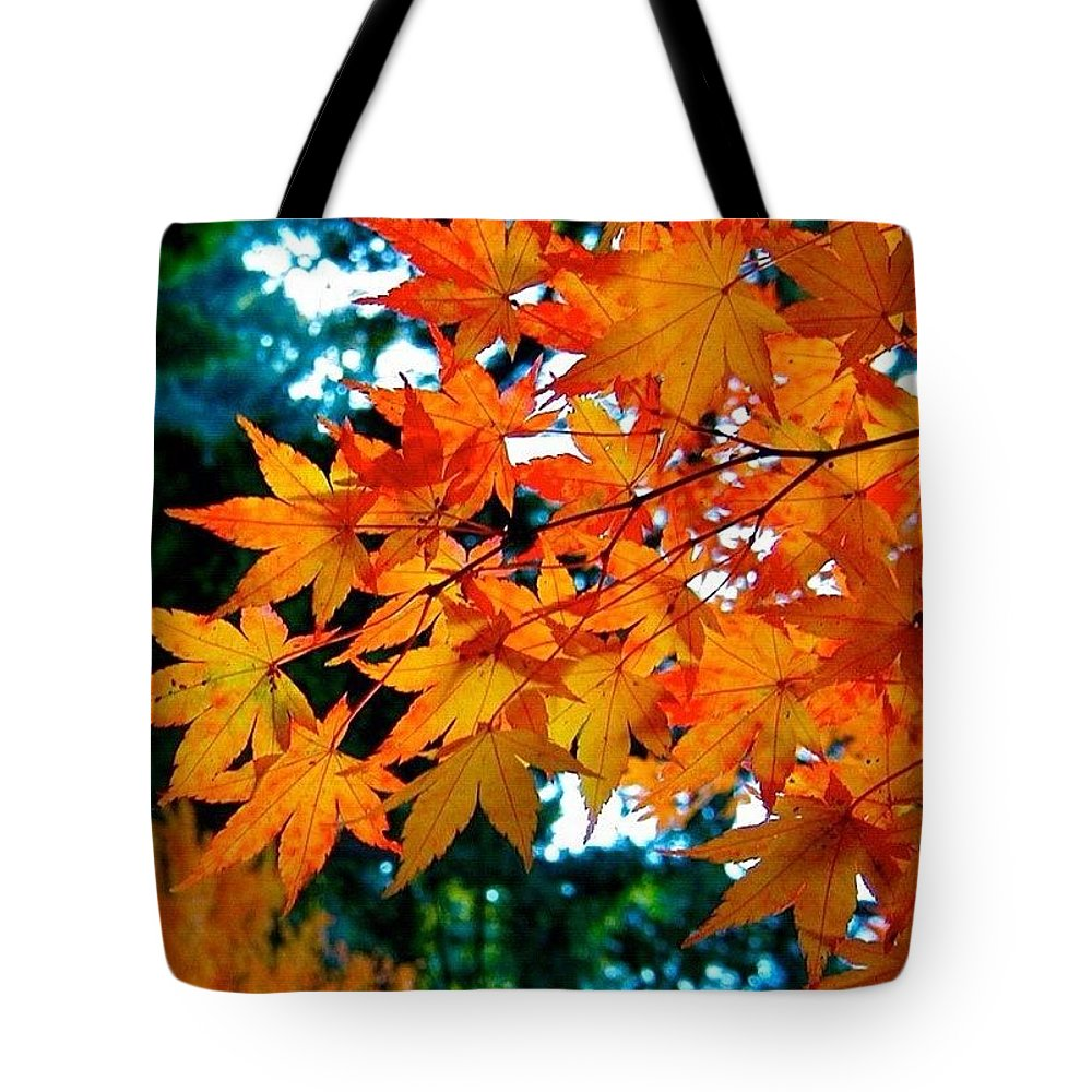 Fall Color Tote Bag featuring the photograph Orange Maple Leaves by Anna Porter