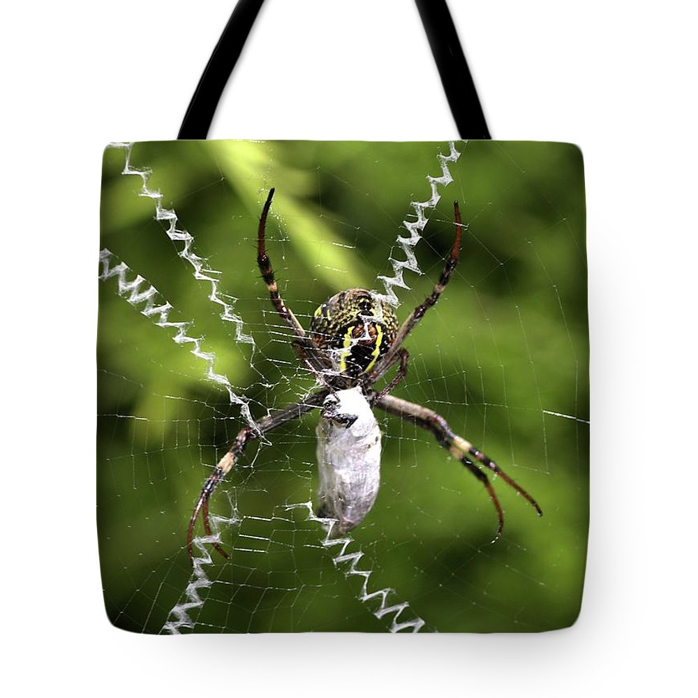 Spider Tote Bag featuring the photograph Orb Weaver by Joy Watson