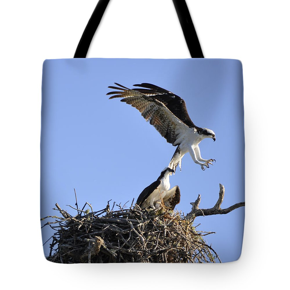 Osprey Tote Bag featuring the photograph Osprey Coming in for a Landing by Christine Stonebridge