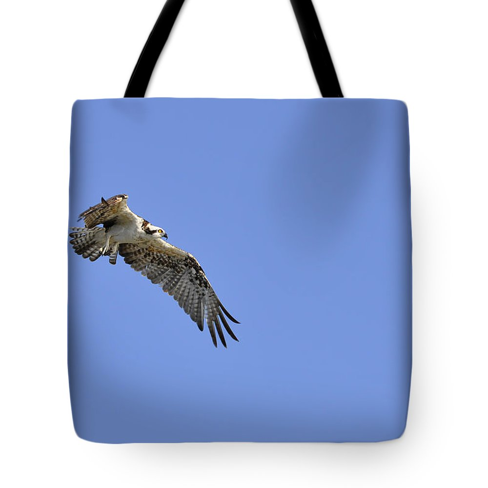 Osprey Tote Bag featuring the photograph Osprey In Flight by Christine Stonebridge