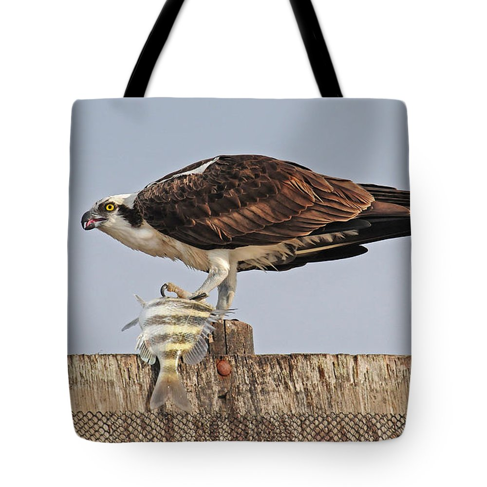 Osprey Tote Bag featuring the photograph Osprey With Catch by Dave Mills