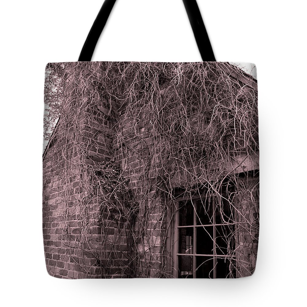 Usa Tote Bag featuring the photograph Over Grown by LeeAnn McLaneGoetz McLaneGoetzStudioLLCcom