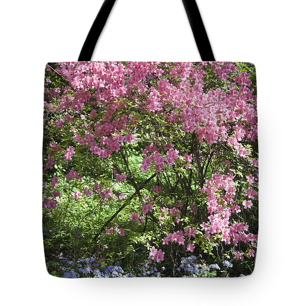 Azalea Tote Bag featuring the photograph Overgrown Natural Beauty by Teresa Mucha