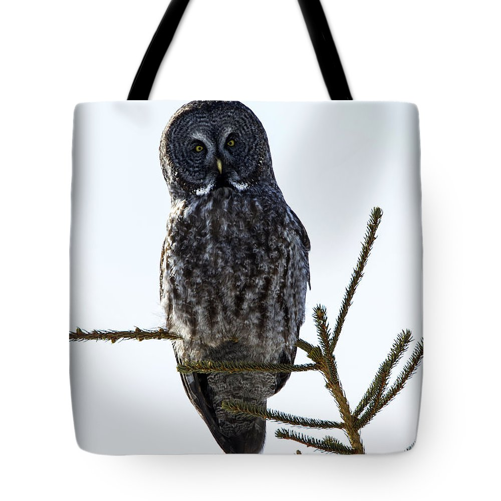 Doug Lloyd Tote Bag featuring the photograph Overload by Doug Lloyd