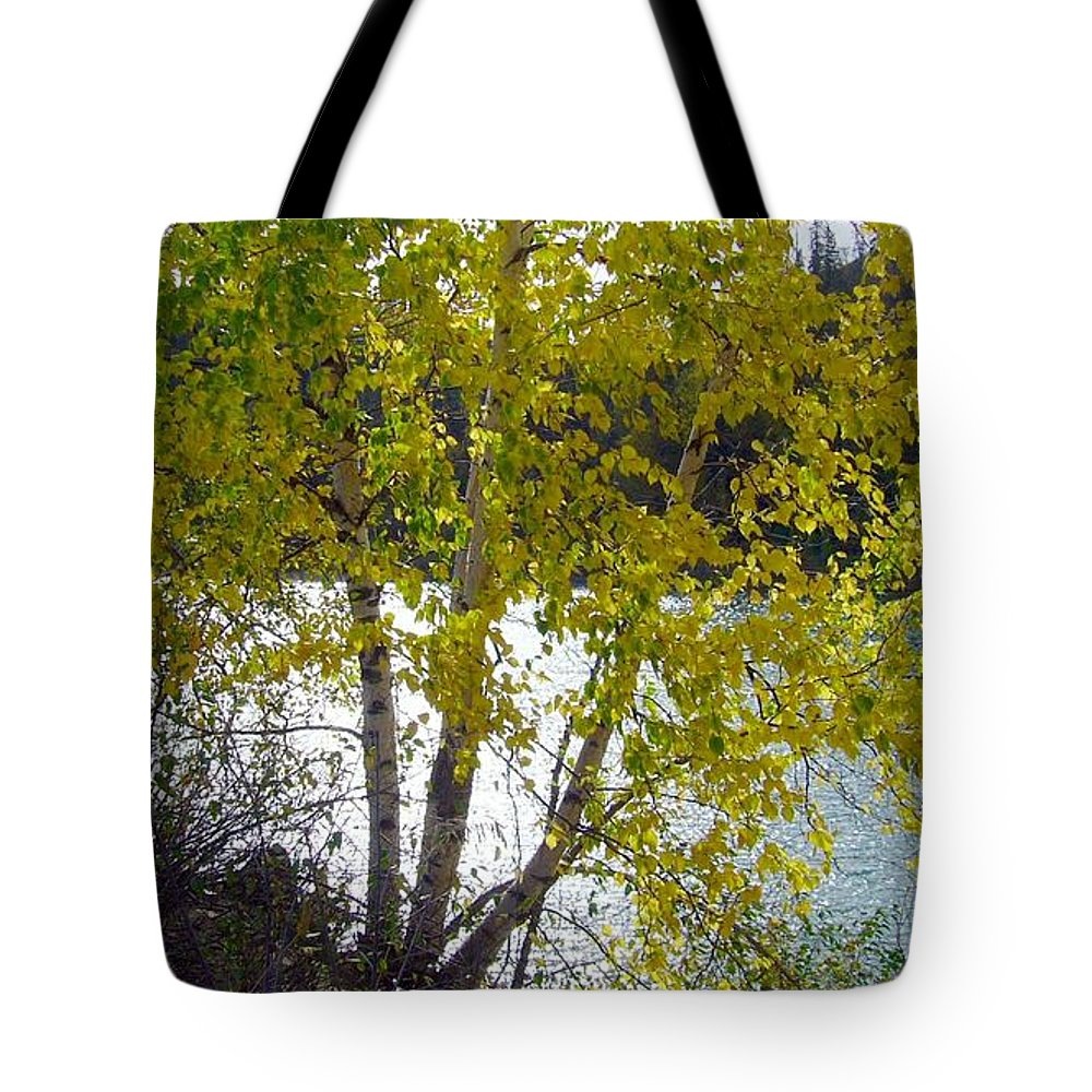 Nature Tote Bag featuring the photograph Overlooking The North Saskatchewan River by Jim Sauchyn