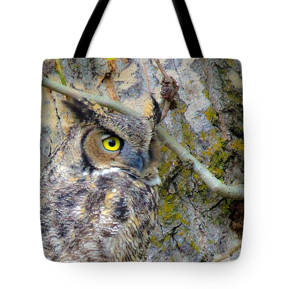 Horned Owl Tote Bag featuring the photograph Owl Eye by Steve McKinzie