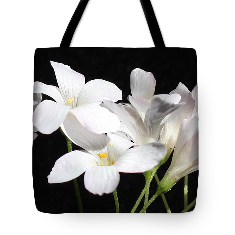Floral Tote Bag featuring the photograph Oxalis Flowers 2 by Kume Bryant