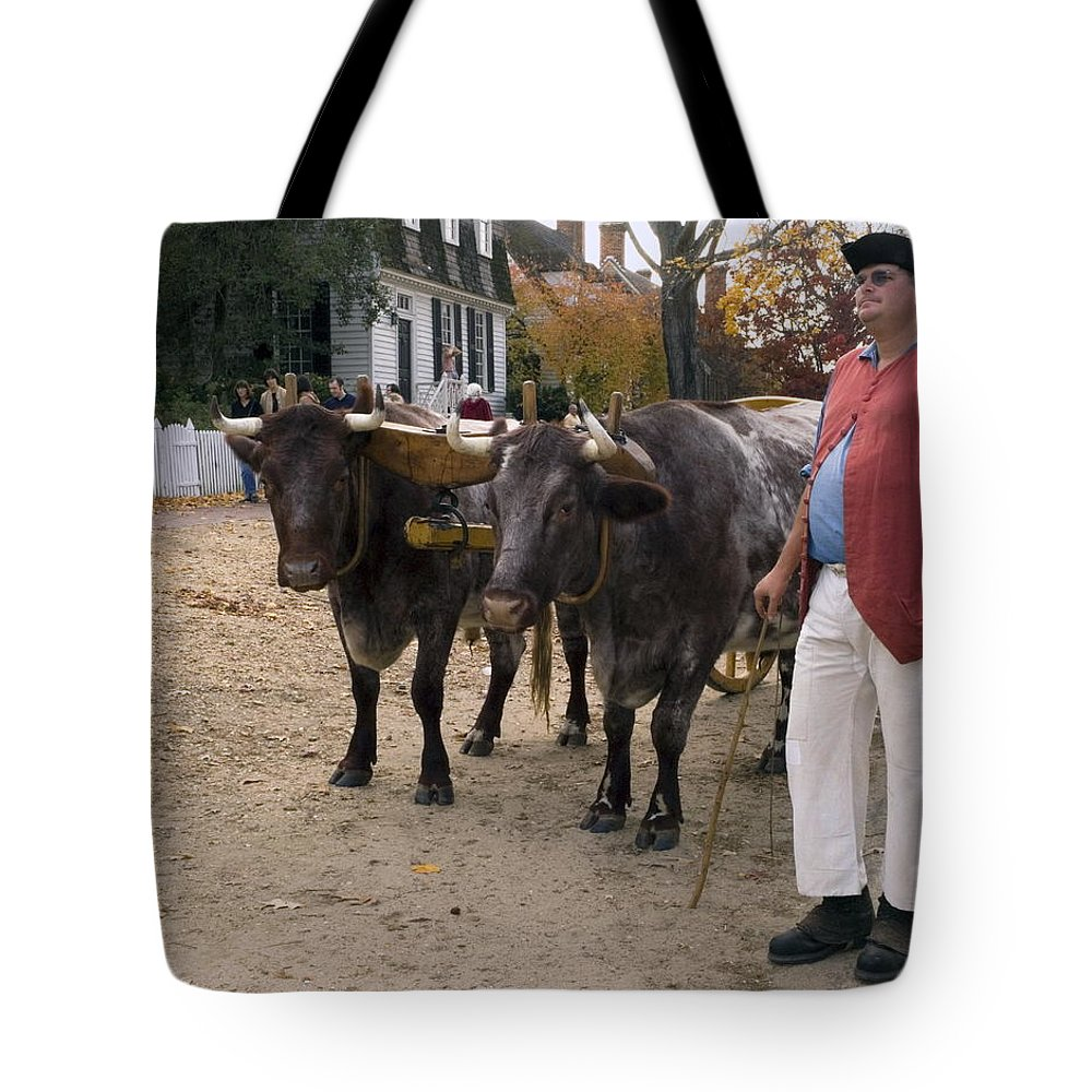 2 Oxen Walking Duke Of Glouster Street Tote Bag featuring the photograph Oxen And Handler by Sally Weigand