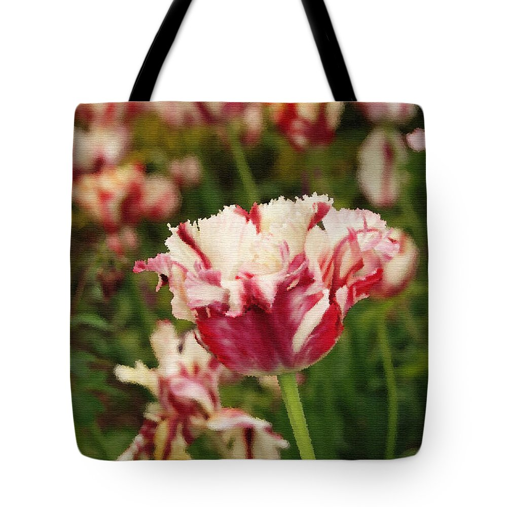 Candy Cane Tulip Tote Bag featuring the digital art Painted Candy Cane Tulip by Eva Kaufman
