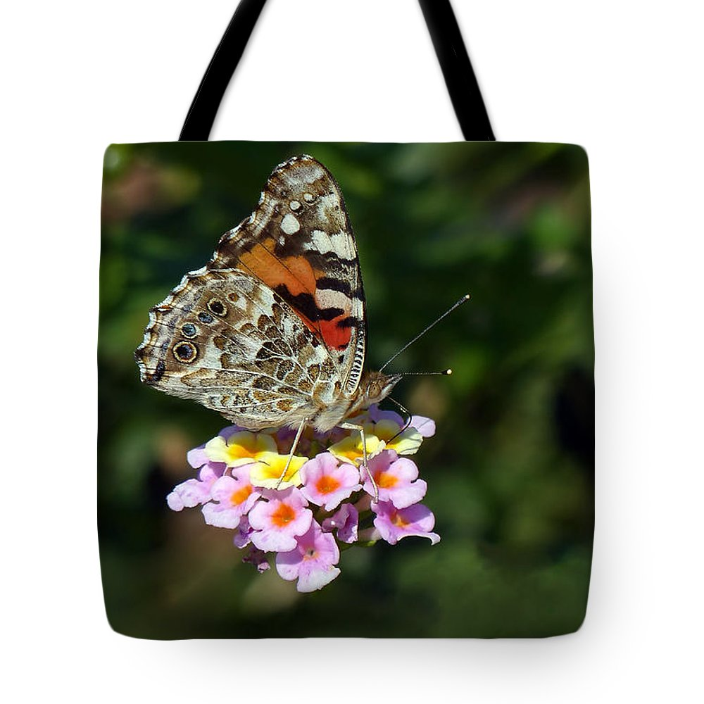 Painted Lady Tote Bag featuring the photograph Painted Lady by Randall Ingalls