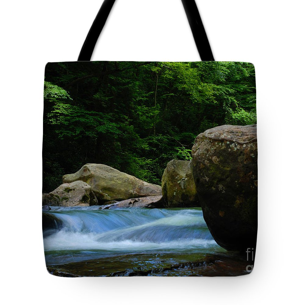 Painted Tote Bag featuring the photograph Painted Rocks by Amanda Jones