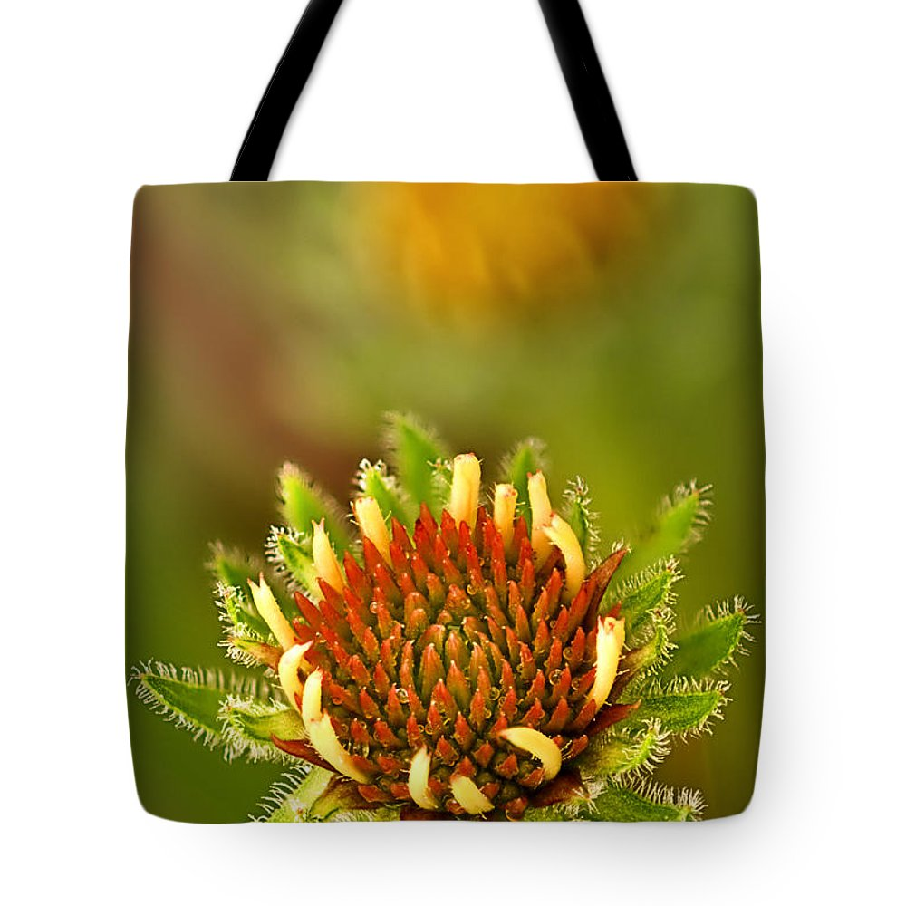 2012 Tote Bag featuring the photograph Pale Purple Coneflower Bud by Robert Charity