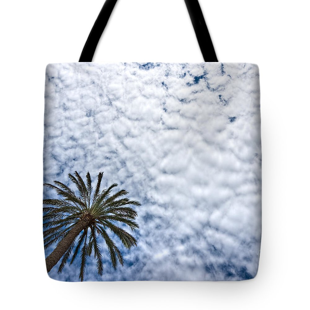 Sunbeam Tote Bag featuring the photograph Palm And Dramatic Sky by Luciano Mortula