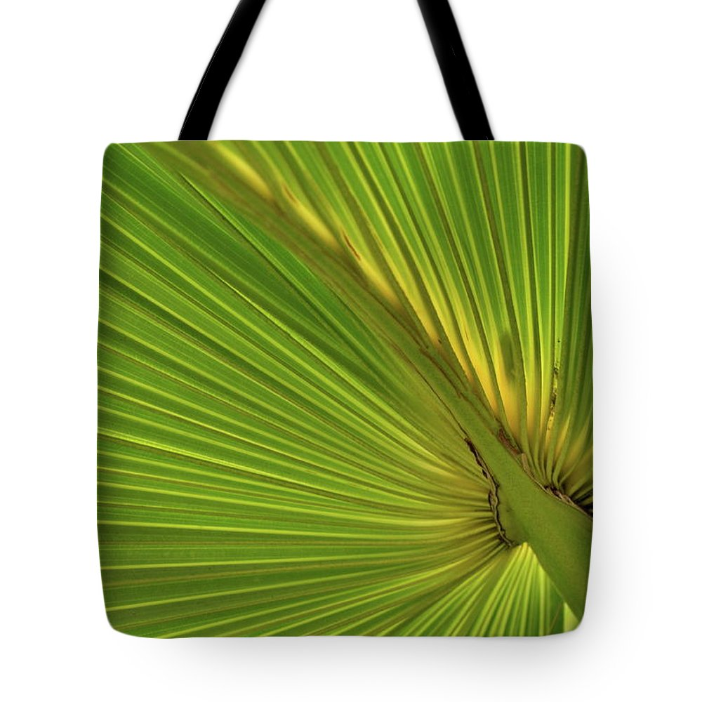 Palm Tote Bag featuring the photograph Palm Leaf II by JD Grimes