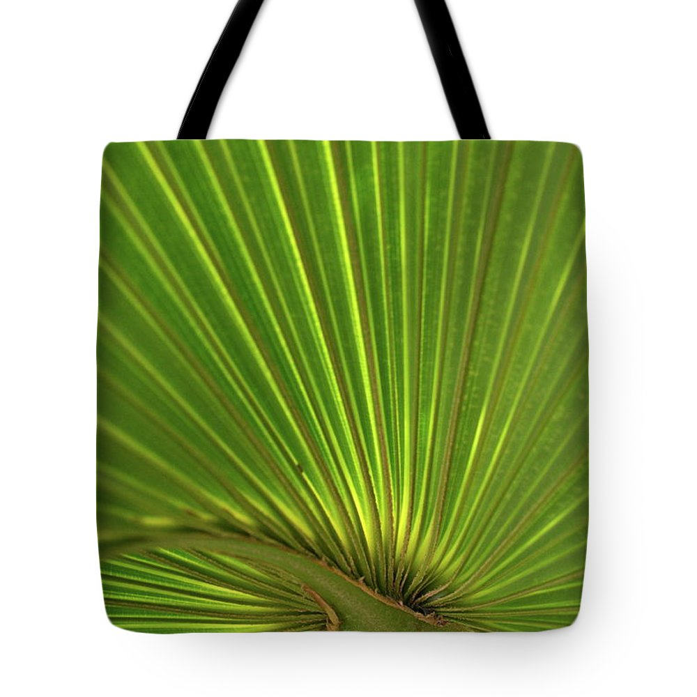Palm Tote Bag featuring the photograph Palm Leaf by JD Grimes