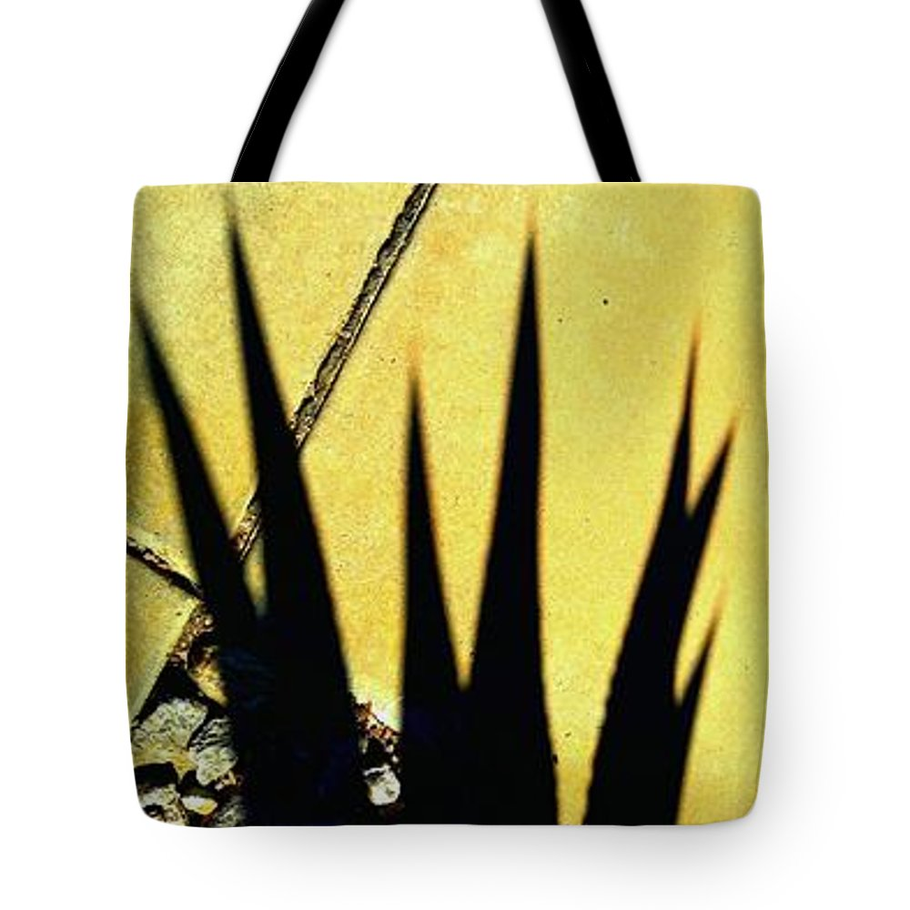 Marlene Burns Tote Bag featuring the photograph Palm Reader by Marlene Burns