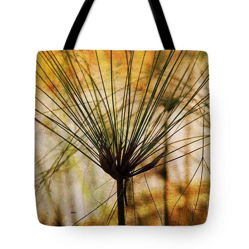 Pampas Tote Bag featuring the photograph Pampas Grass by Susanne Van Hulst