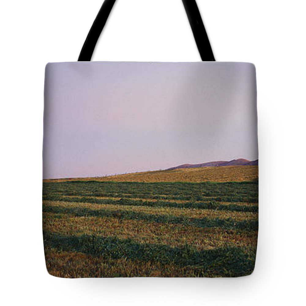 Agriculture Tote Bag featuring the photograph Panoramic View Of An Alfalfa Field by Kenneth Garrett
