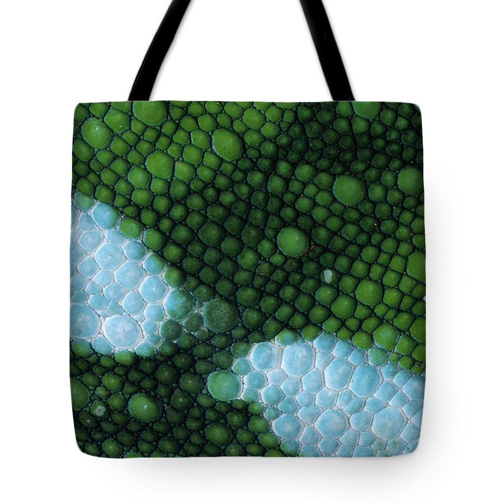 Fn Tote Bag featuring the photograph Panther Chameleon Chamaeleo Pardalis by Ingo Arndt