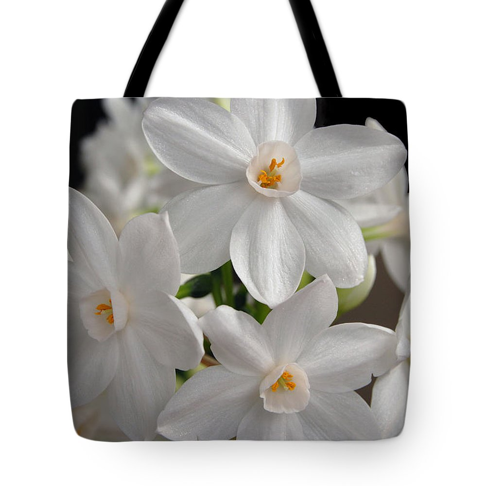 Paperwhite narcissus flower tote bag for sale by eva kaufman paperwhite narcissus flower tote bag featuring the digital art paperwhite narcissus flower by eva kaufman mightylinksfo