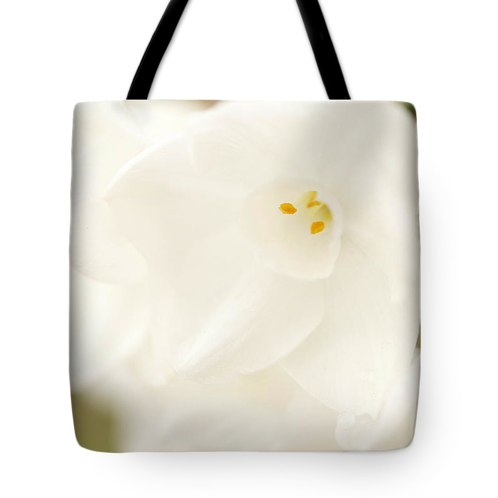 Narcissus Papyraceus Tote Bag featuring the photograph Paperwhites by Brooke Roby