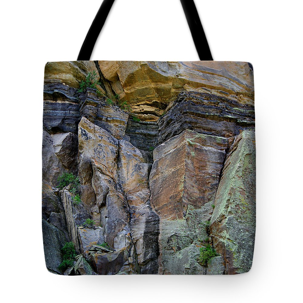 Wall Tote Bag featuring the photograph Passage Of Time by Vicki Pelham