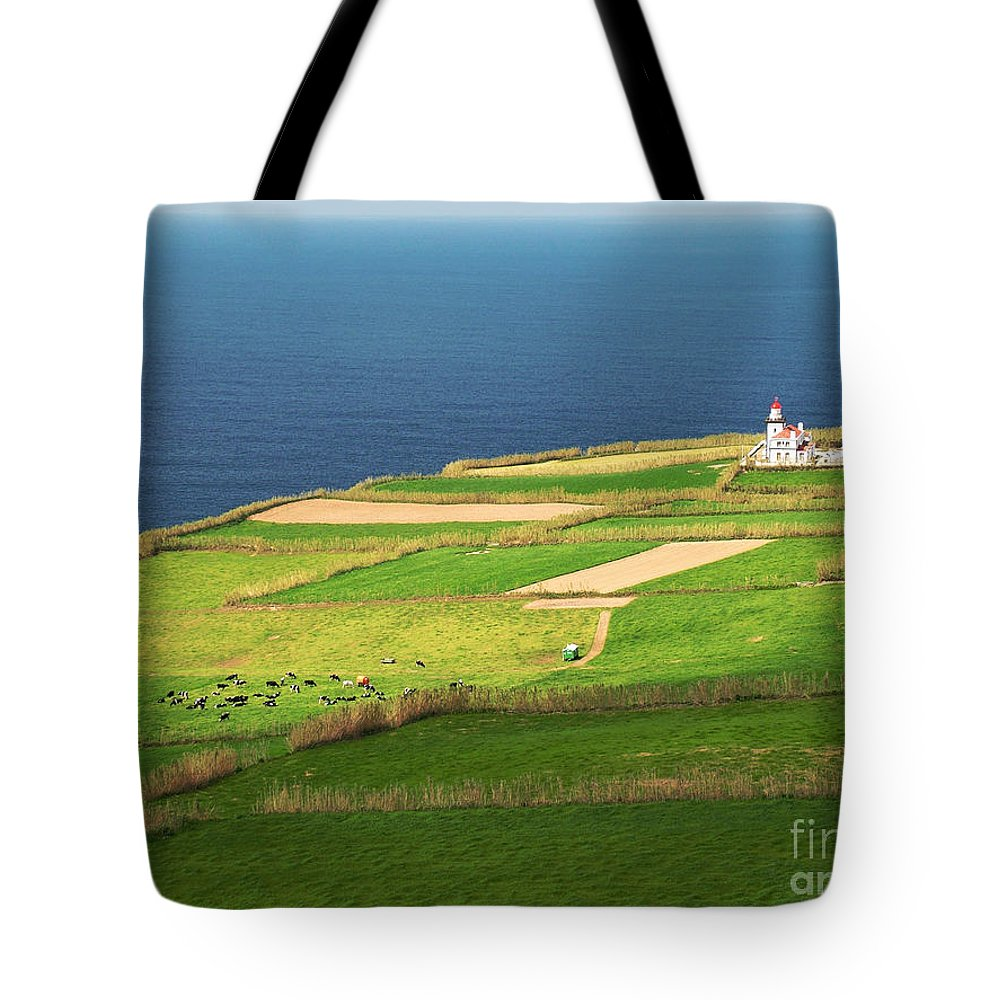 Landscape Tote Bag featuring the photograph Pastures And Lighthouse by Gaspar Avila