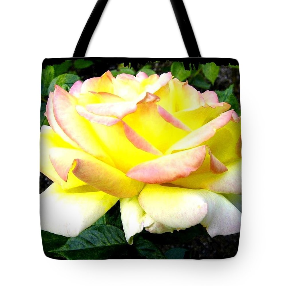 Peace Rose Tote Bag featuring the photograph Peace Rose- Okanagan Valley by Will Borden