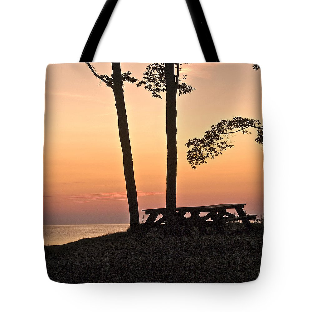 Landscape Tote Bag featuring the photograph Peaceful Evening Picnic 7109 by Michael Peychich
