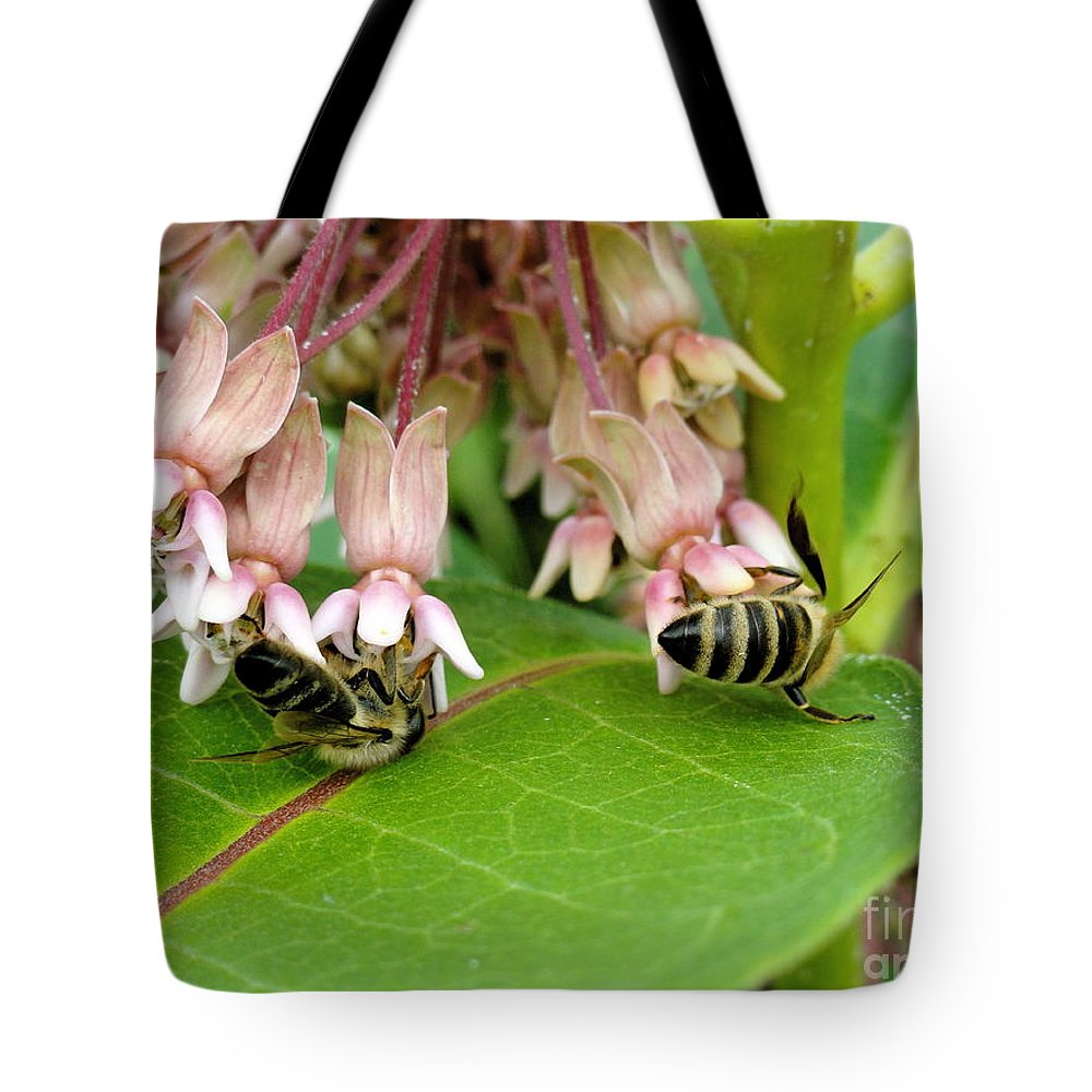 Holmesbrook Photographs Tote Bag featuring the photograph Peaceful Gathering by Trish Hale