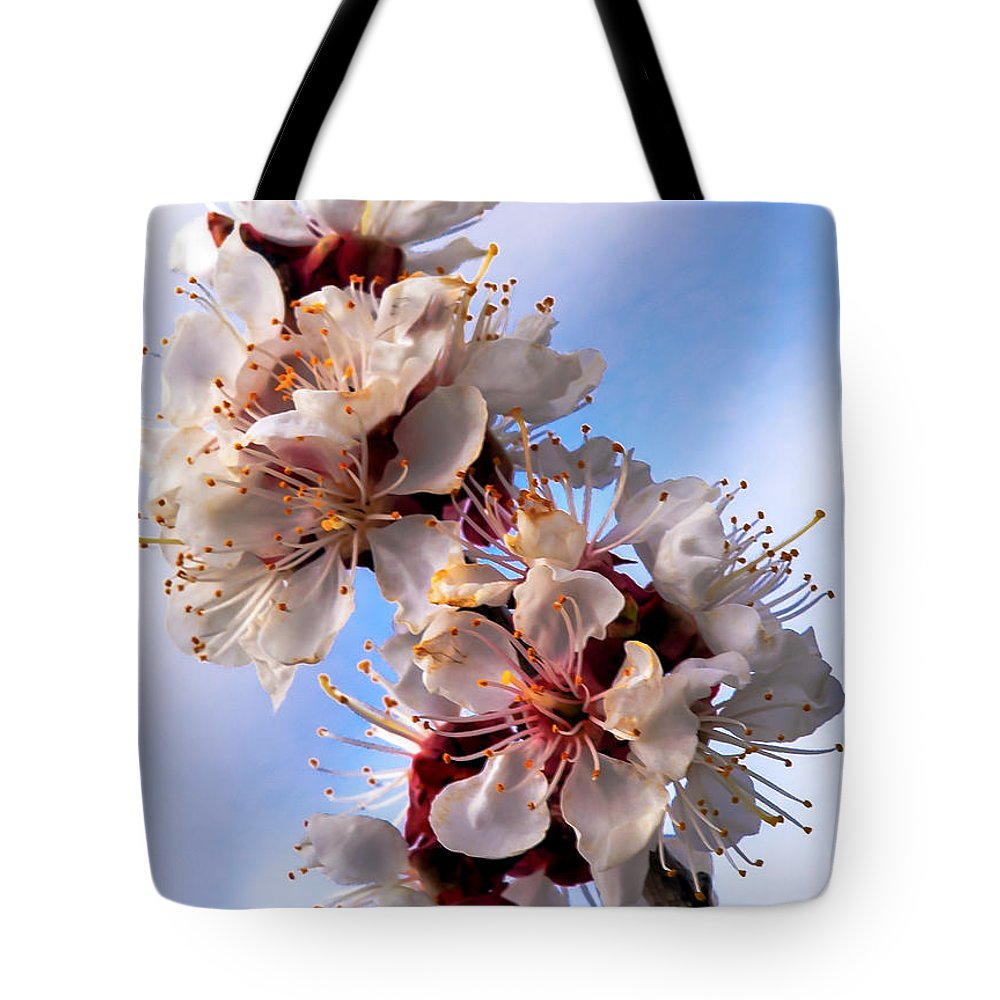Flowers Tote Bag featuring the photograph Peach Blossoms by Robert Bales