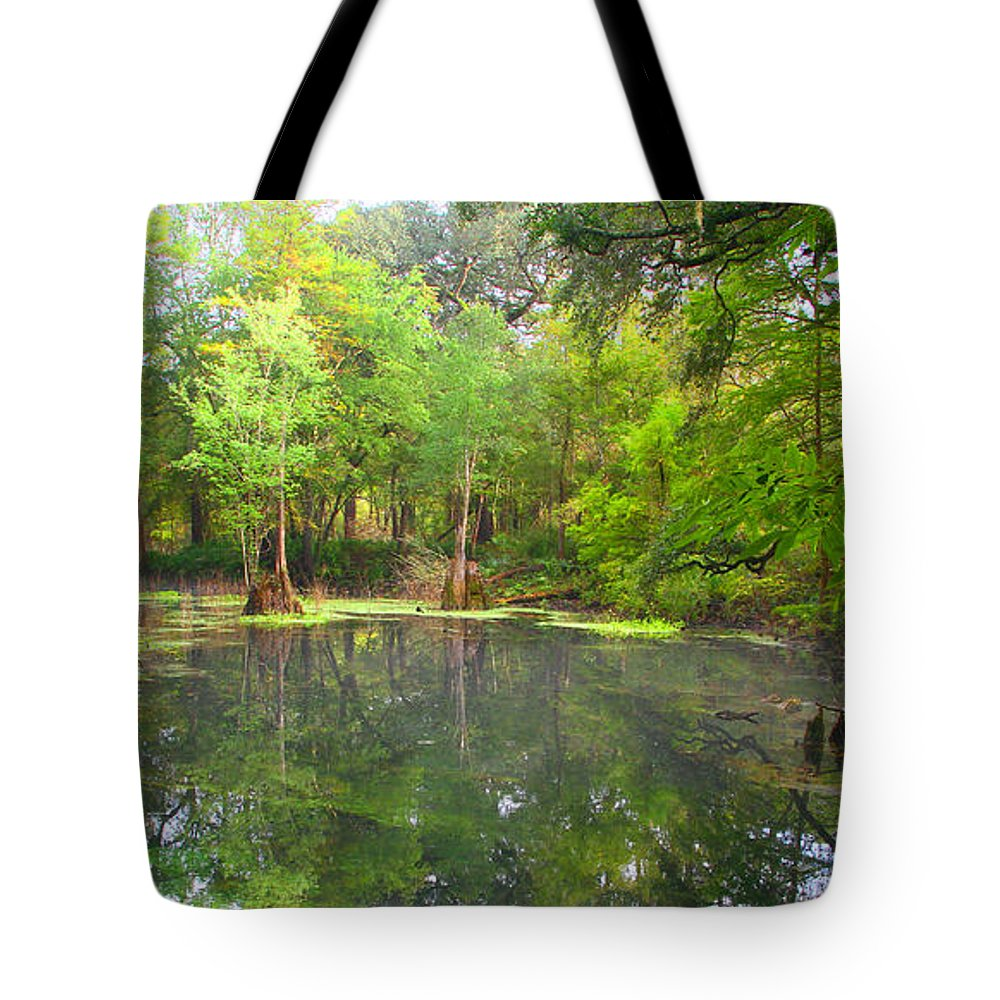 Peacock Springs State Park Tote Bag featuring the photograph Peacock Springs State Park by Barbara Bowen