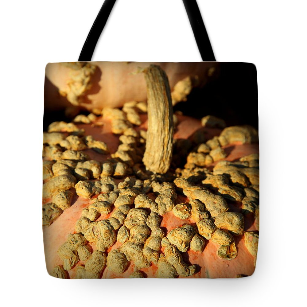 Pumpkins Tote Bag featuring the photograph Peanut Pumpkins by Karen Wiles