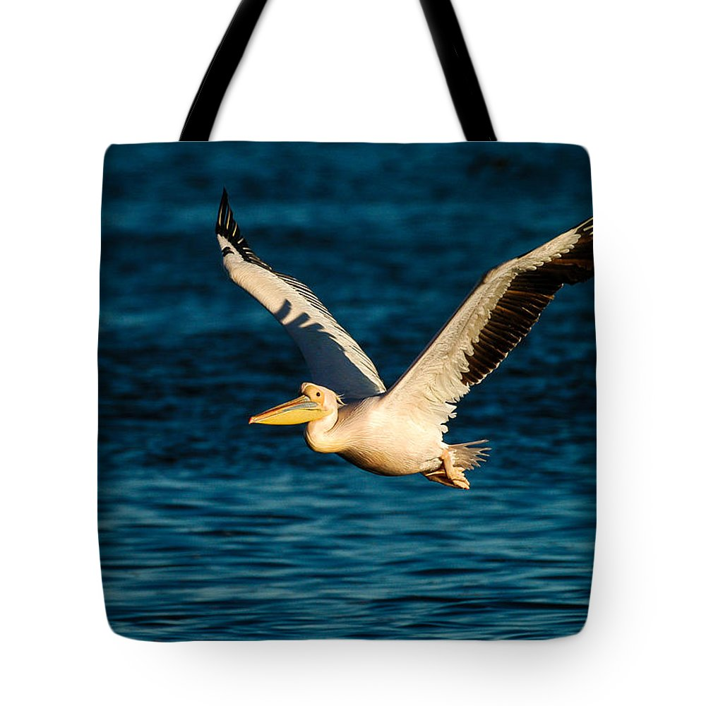 Action Tote Bag featuring the photograph Pelican Brief by Alistair Lyne