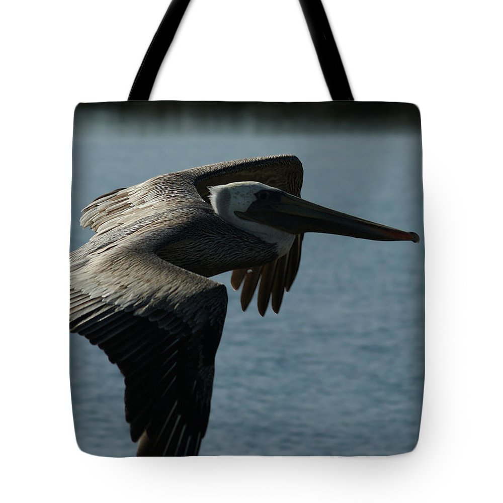 Brown Pelican Tote Bag featuring the photograph Pelican Fly By by Ernie Echols