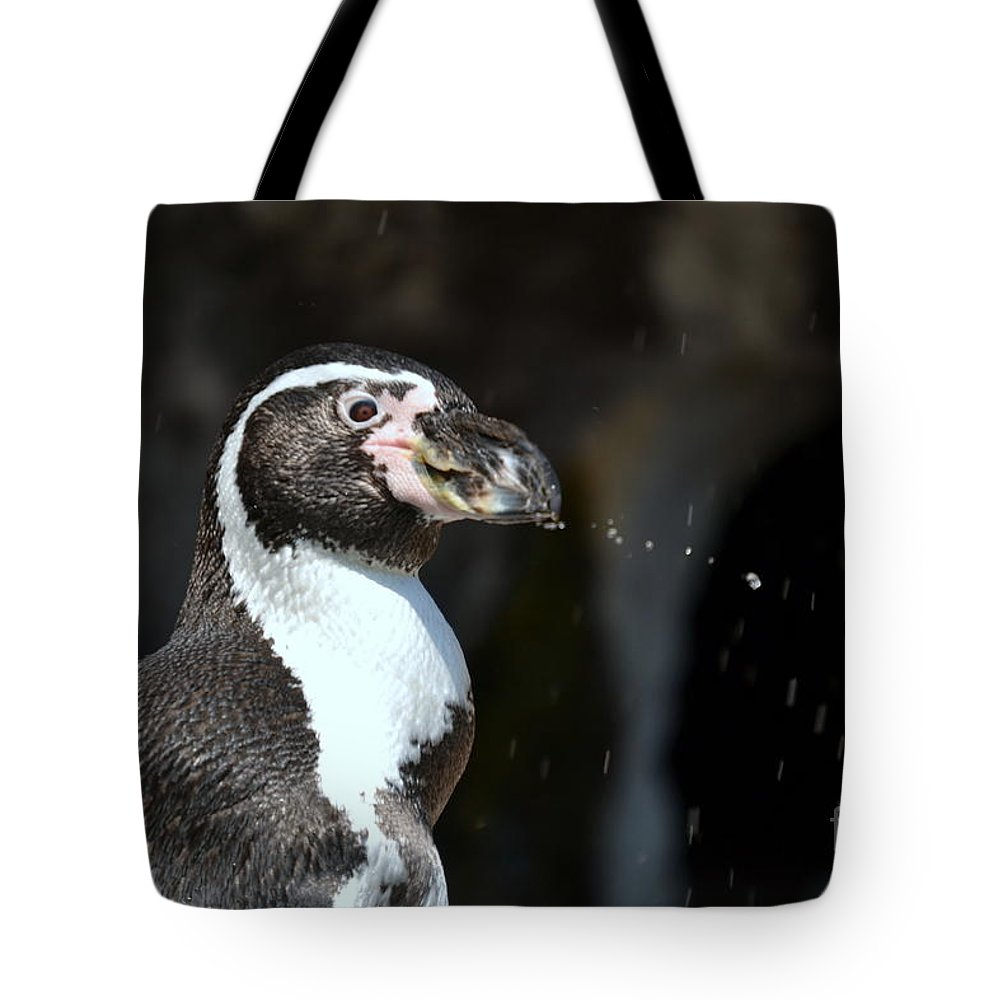 Penguin Tote Bag featuring the photograph Penguin Splash by Dyana Rzentkowski