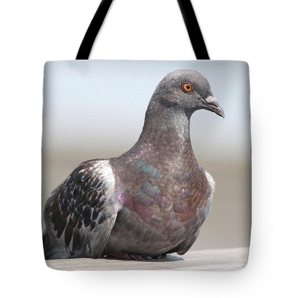 Pigeon Tote Bag featuring the photograph Perched On The The Dock Of The Bay by Deborah Benoit