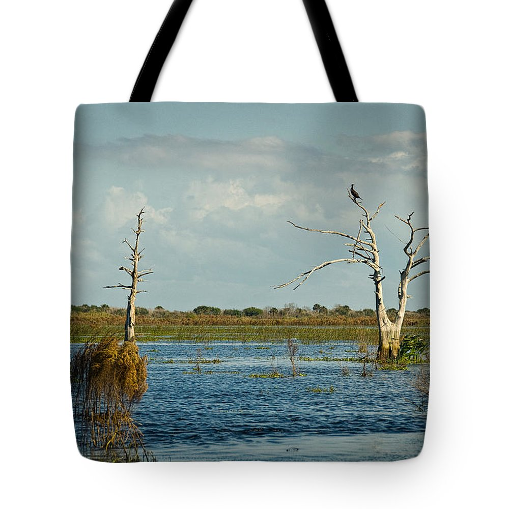 Bird Tote Bag featuring the photograph Perched Up High by Cindy Tiefenbrunn