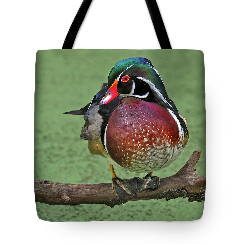 Wood Duck Tote Bag featuring the photograph Perched Wood Duck by Dave Mills