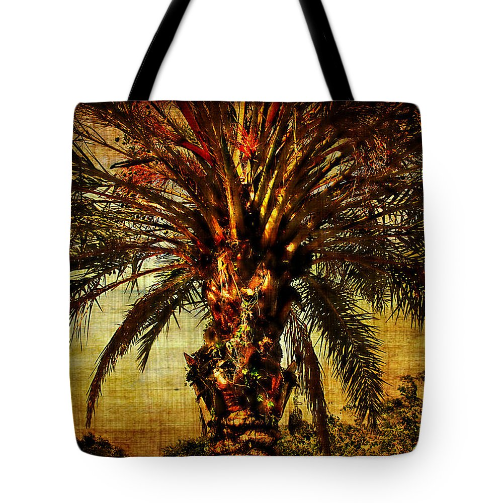 Palm Tree Tote Bag featuring the photograph Perfect Palm by Chris Crowley