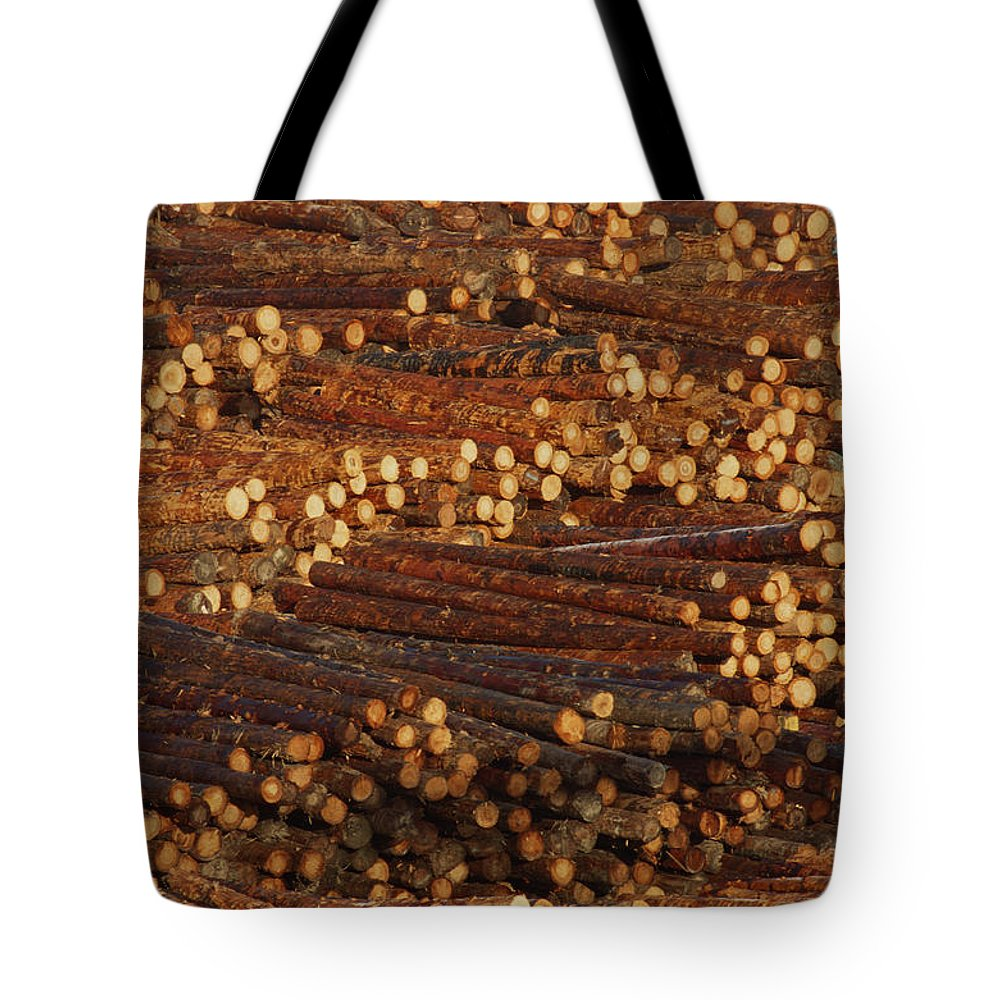 Bundles Tote Bag featuring the photograph Pile Of Logs, Peeled And Ready by David Nunuk
