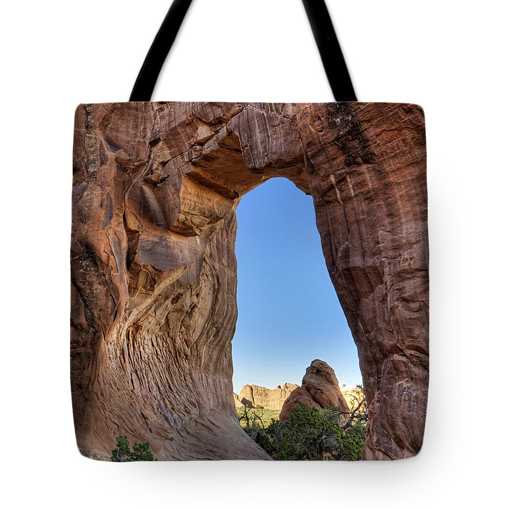 Pine Tote Bag featuring the photograph Pine Tree Arch - D004090 by Daniel Dempster